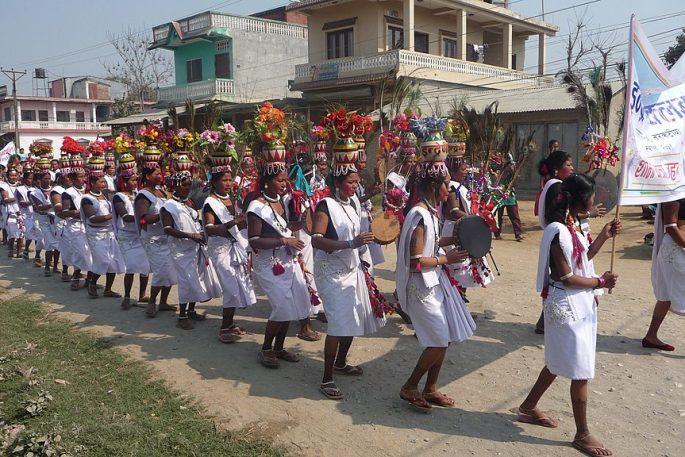 tharu festival chitwan