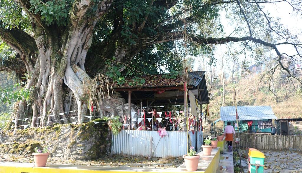 Kakika Dham Panchthar