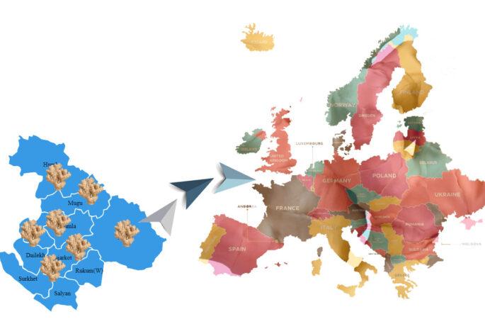 aduwa europe