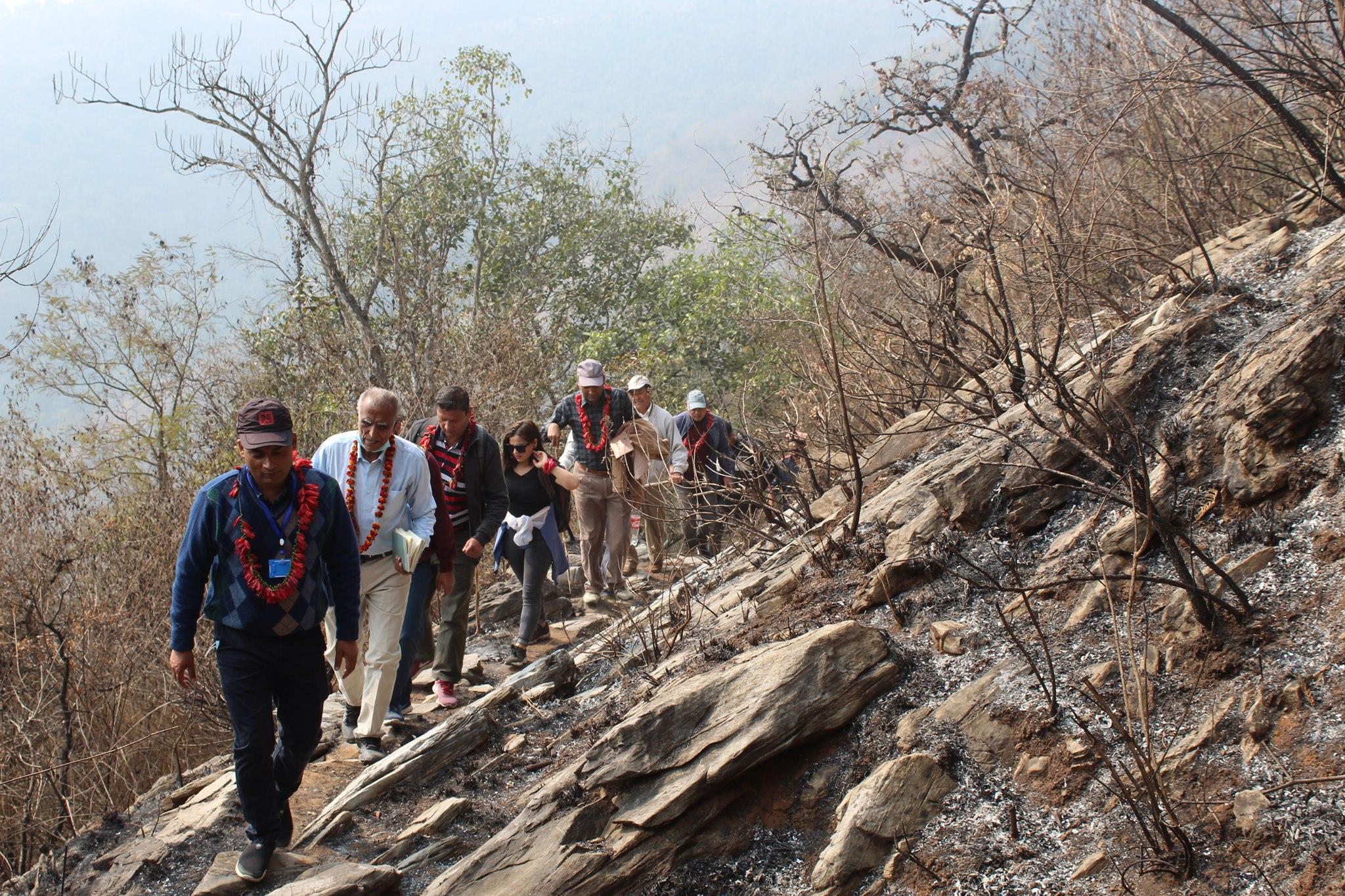 eco trek survey photo 2