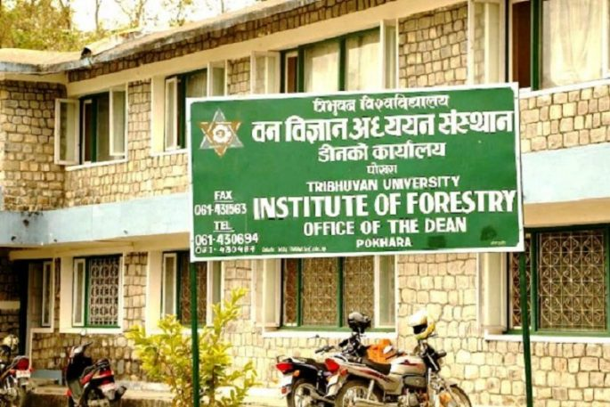 forestey college RrRoFq7LIT