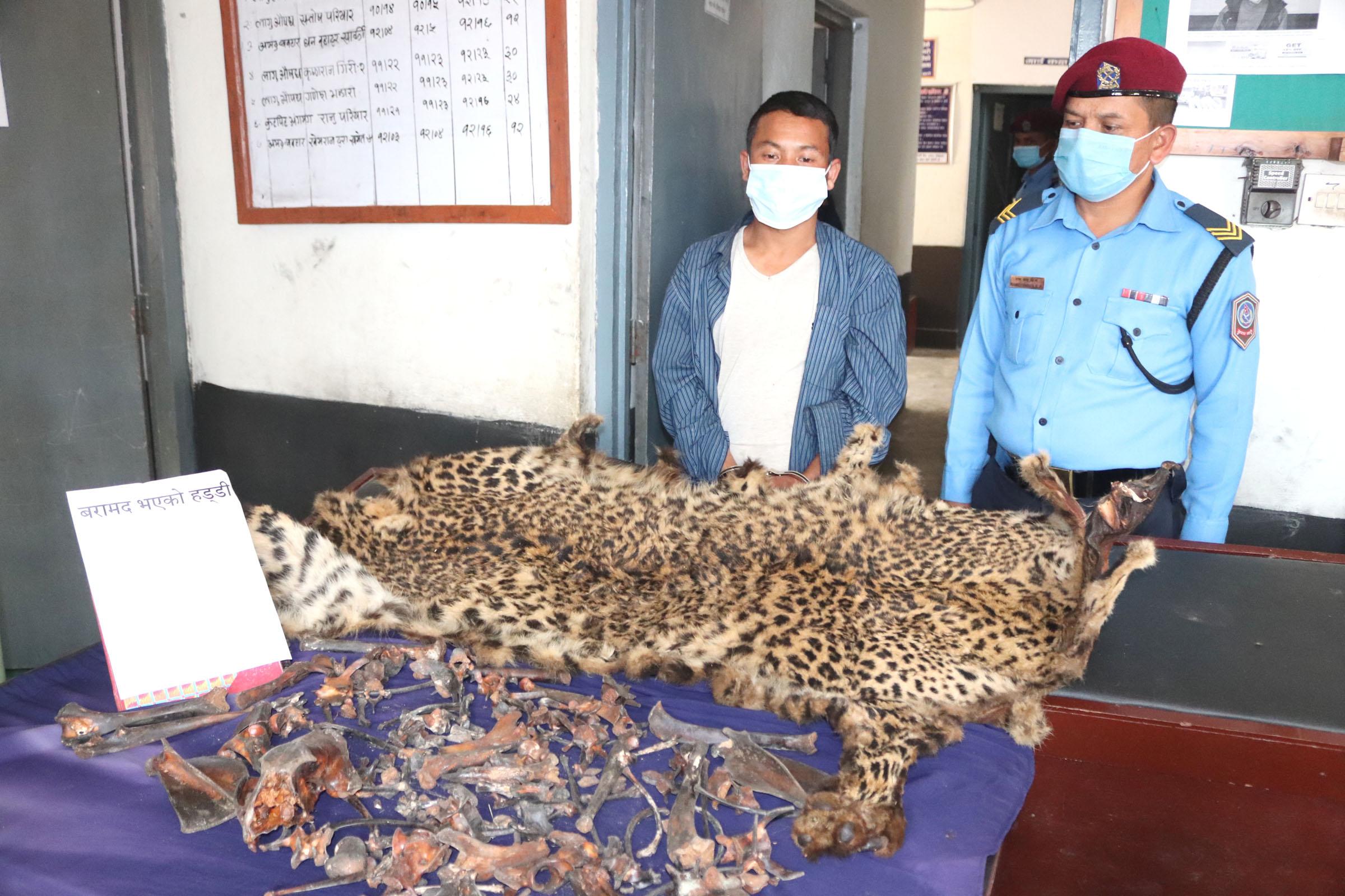 arrested with tiger skin