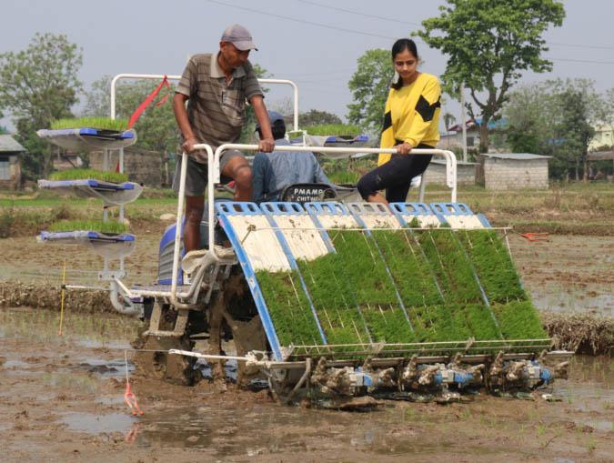 chitwan rice farming machine