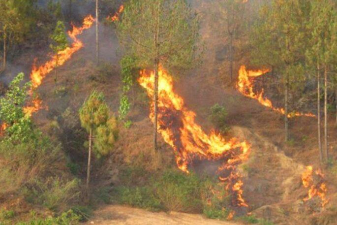 AAglagi Fire
