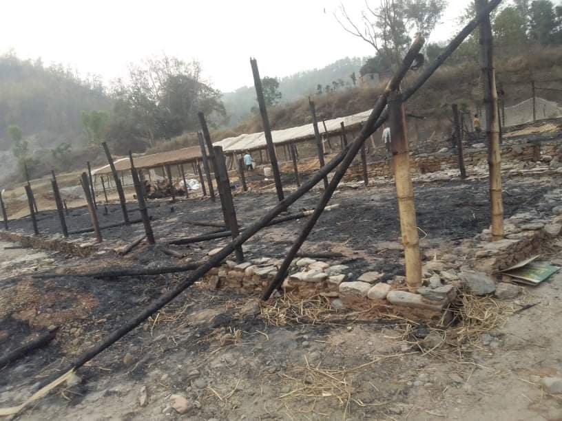 poultry dailekh fire