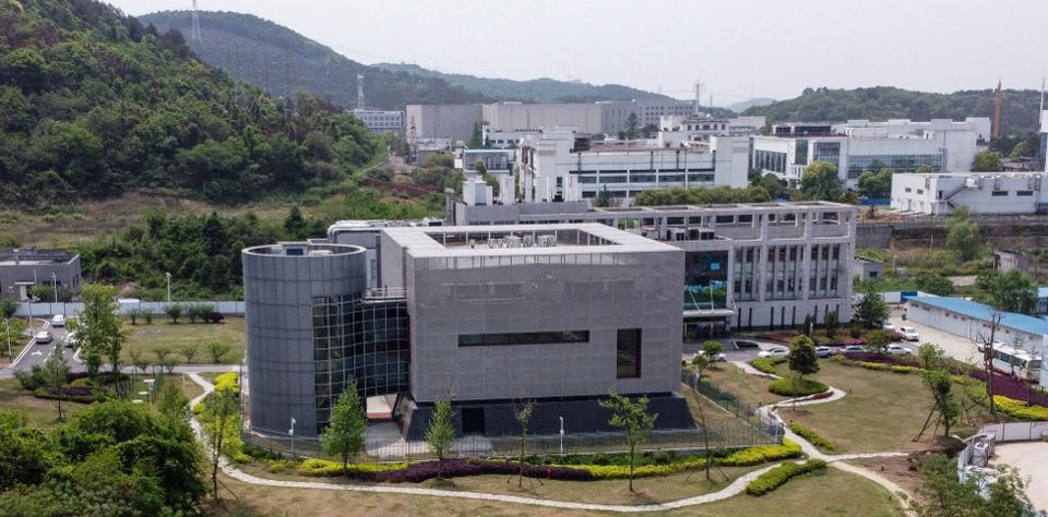 Wuhan Lab Technology of Virology