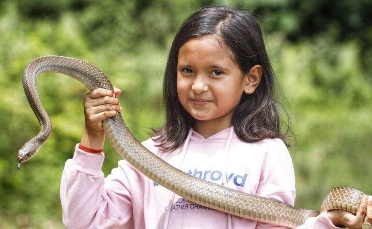 snake rescue 2 768x472 1