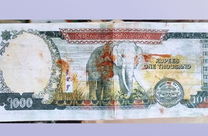 nakkali dupicate note currency